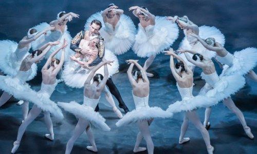 El Liceu acoge el estreno en España de la coreografía de John Cranko para 'El lago de los cisnes', con el Ballet Nacional Checo